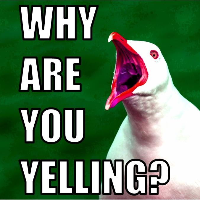 Yelling2