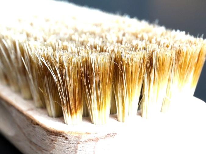 brush-629657