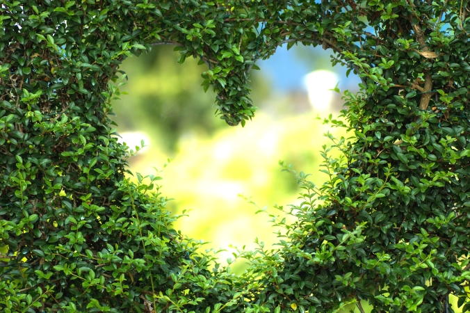 heart-1192662